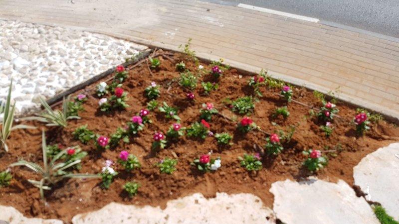 מערכות השקיה לגינה