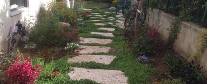 מערכת השקיה לגינה