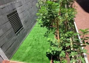 הקמת גינה פרטית ברחוב תוף מרים, הרצליה